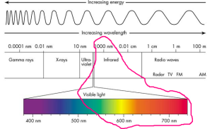 The wavelengths in IPL hair removal are circled in this diagram.